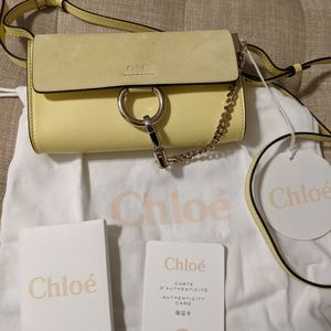 Authentic mini Chloe Faye bag.